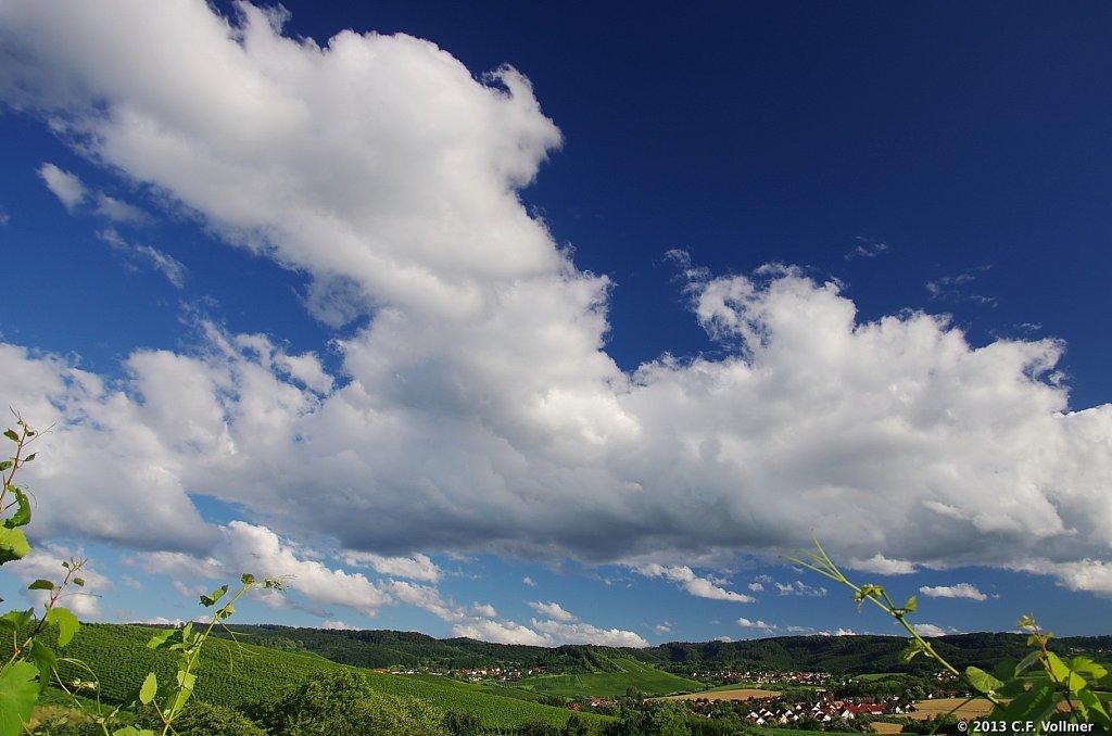 Obersulmer Panorama